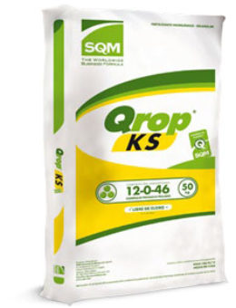 (Español) Qrop® KS