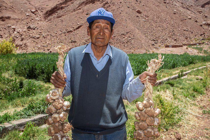 Programa Atacama Tierra Fértil de SQM potencia agricultura de Río Grande