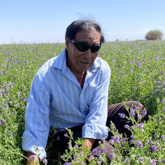 Farmers in Pintados Transform Desert into Garden
