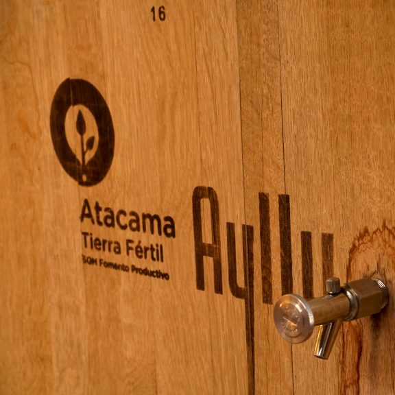 Salar de Atacama Winemakers: Producing Wine in Extreme Conditions for More Than 10 Years