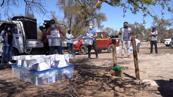 SQM entrega insumos a ganaderos de Pozo Almonte