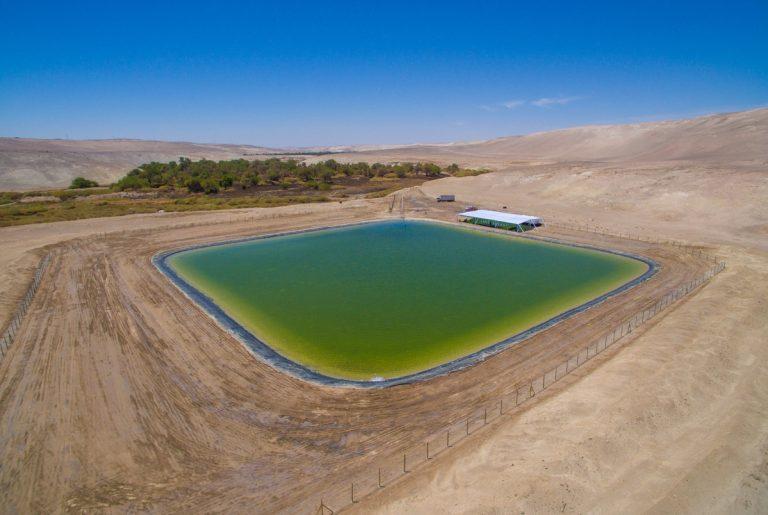 Tranque de Quillagua dará continuidad hídrica al oasis