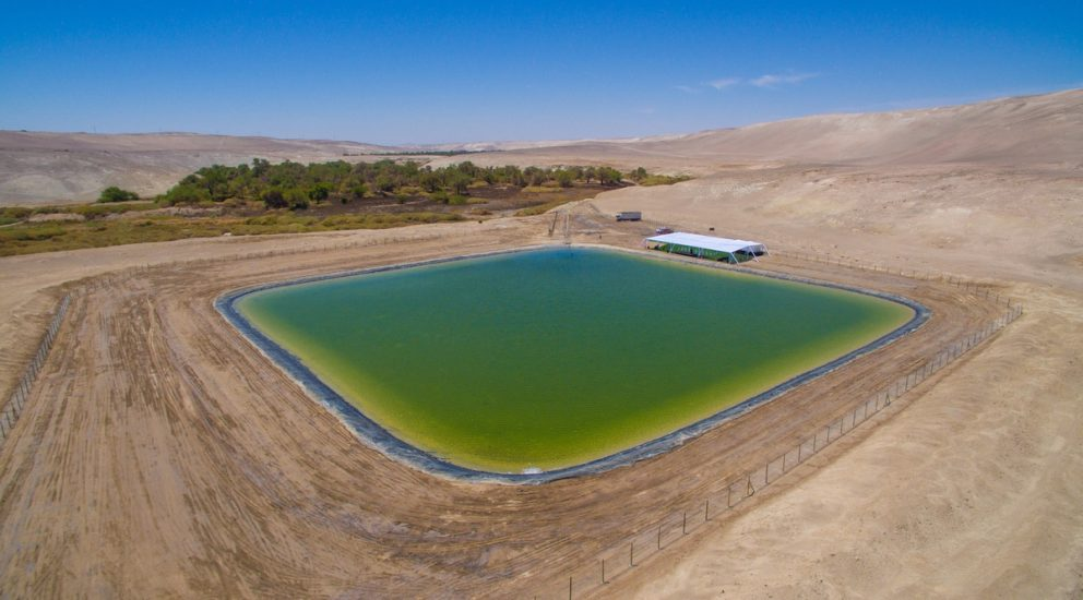 Quillagua Reservoir will provide constant supply of water to the oasis