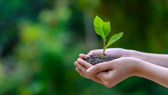 En SQM reforzamos nuestro compromiso con las energías limpias