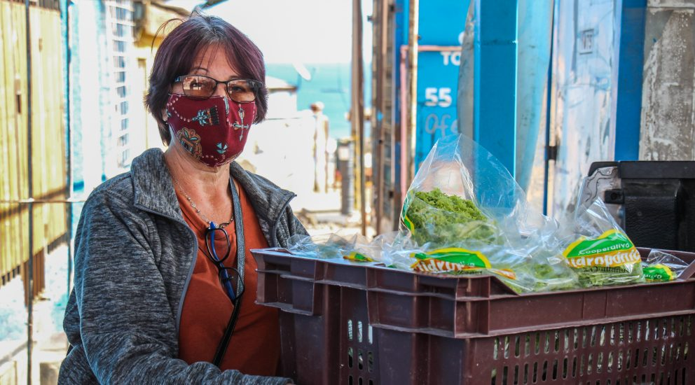 Invernaderos locales de SQM donaron 30 mil hortalizas a la comunidad